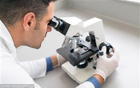 联合抑制HDAC/LSD1用于抗三阴性乳腺癌的实验研究